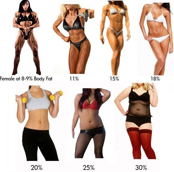 procent masti kod zena